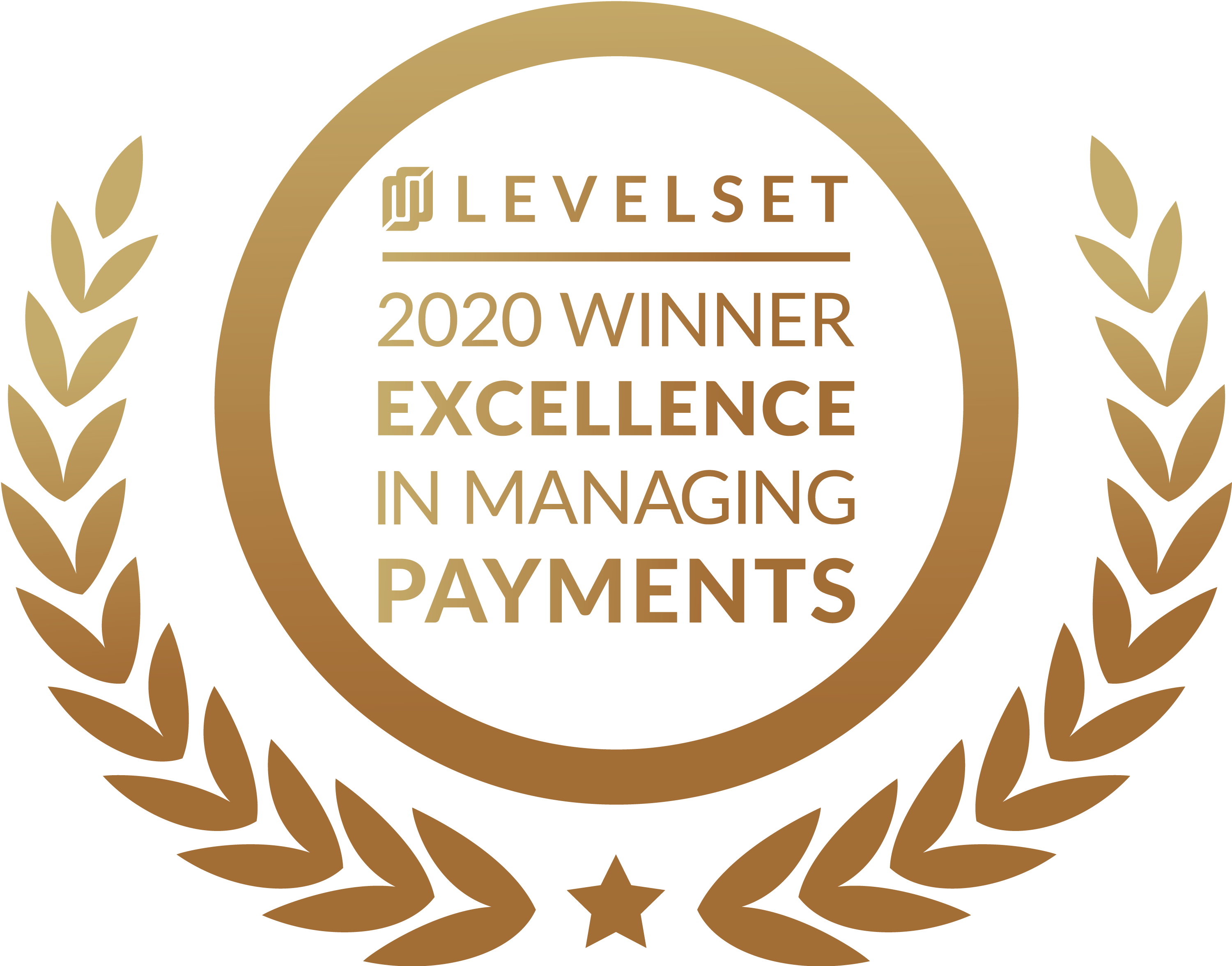 2020 Excellence in Managing Payments award logo